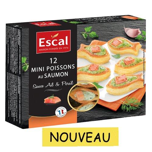 Bouchées de saumon 500x498