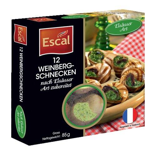Eine Schachtel mit 12 Weinbergschnecken