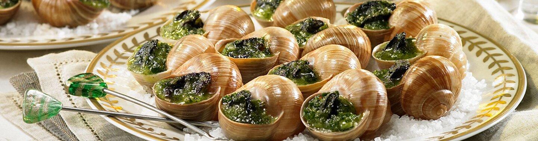 Burgunder Weinbergschnecken auf einem runden weißen Teller angerichtet und mit Spießchen dekoriert